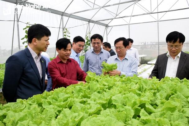 Nam Đàn sớm hoàn thiện hồ sơ đề nghị huyện đạt chuẩn nông thôn mới