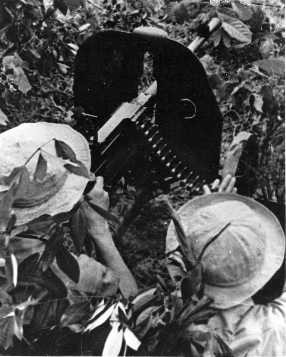 Bộ ảnh đặc biệt năm Mậu Thân 1968 của quân đội Mỹ - Ảnh 22.