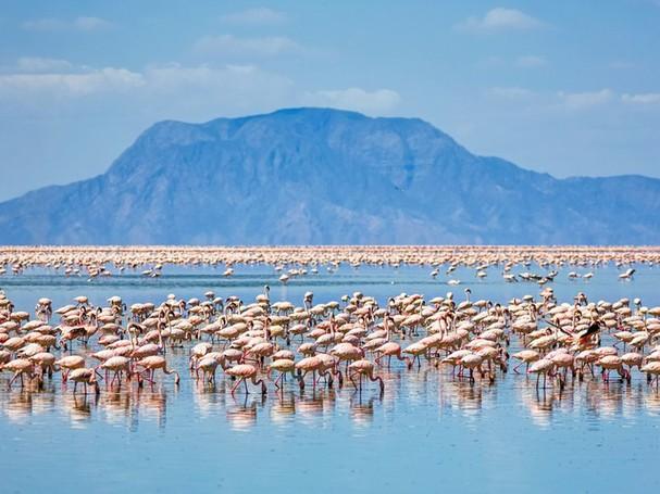 Chiêm ngưỡng vẻ đẹp kì lạ của trái đất qua 25 bức ảnh - ảnh 15