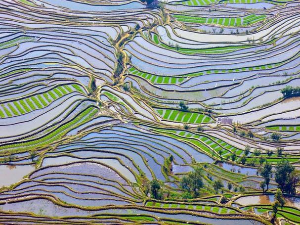 Chiêm ngưỡng vẻ đẹp kì lạ của trái đất qua 25 bức ảnh - ảnh 3